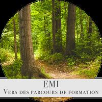 EMI parcours formation.png