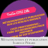Métacognition et publication sur les réseaux sociaux