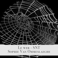 Web Sophie.png