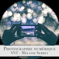 PhotoNumMel.png